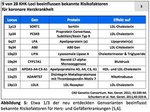 Abbildung: 9 von 28 KHK-Loci beeinflussen bekannte Risikofaktoren für koronare Herzkrankheit
