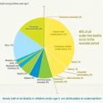 Faktenblatt Kindersterblichkeit 2015